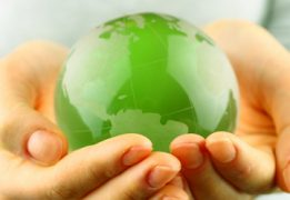 What is your Green policy?